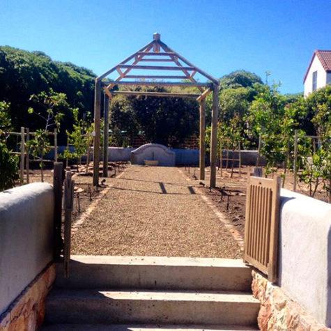 Tone-Alexander---Old-Cape-Farm-Road-Noordhoek.1